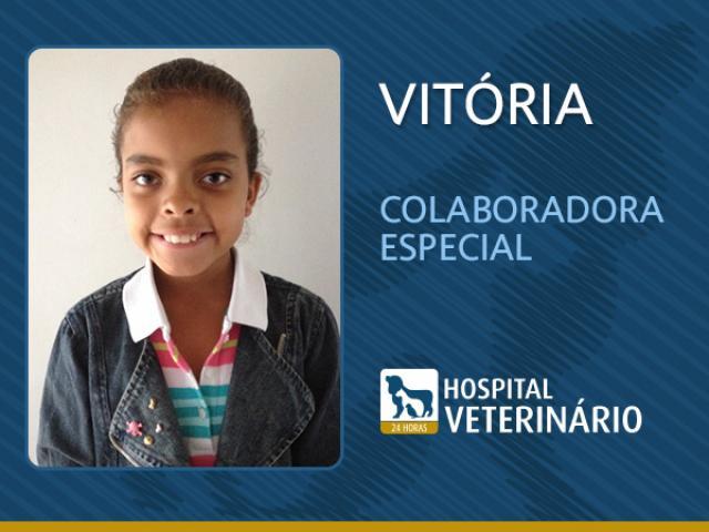 Vitoria.jpg